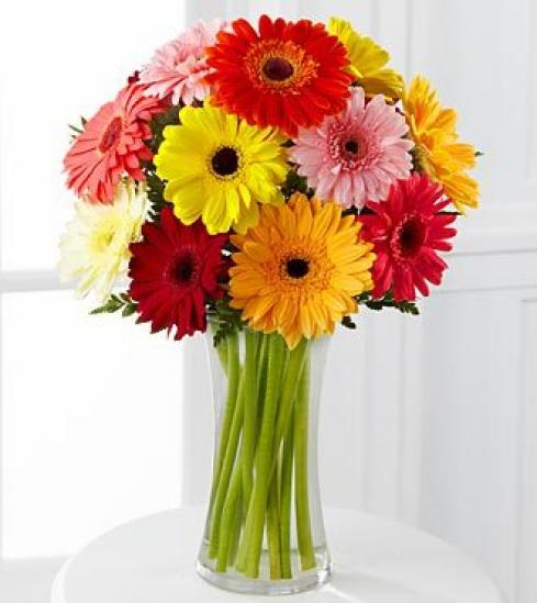 Фото букеты и цветы герберы